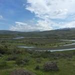 13 entree au parc des tores del Paine