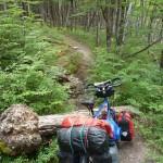 76 une bonne vingtaine d arbres en travers, ou il faut porter les bagages puis le velo