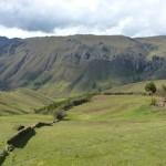 56- J21- Les hauts plateaux verdoyants de l'altiplano