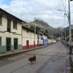 59- J22- Depart de Huallanca pour une longue, longue journee